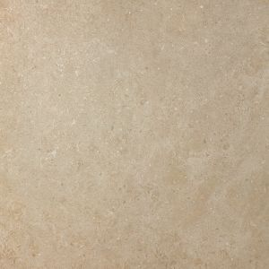 Limestone Biscuit Stones Collection